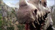 Ceratosaurus 1977