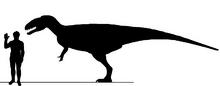 Japiesaurus Rex