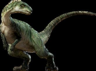 Large-ornitopod.png
