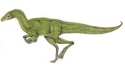 Velocisaurus.jpg