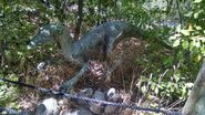 George s eccles dinosaur park troodon by dinolover09 dcoo4po-fullview