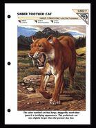Wildlife fact file Smilodon front
