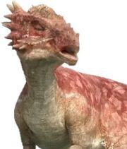 Stigimoloch.jpg