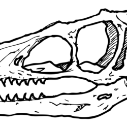 Asiatische Dinosaurier