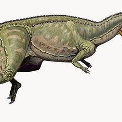 Dinosaurier der Jura