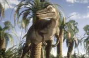 Saurornithoides 3.png