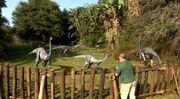 Ornithomimus.jpg