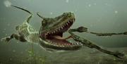 Hyphalosaurus 3.png