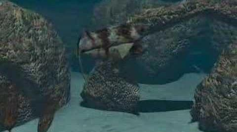 Animation 5 From Oceans Origins of Life