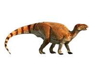 Jinzhousaurus 2