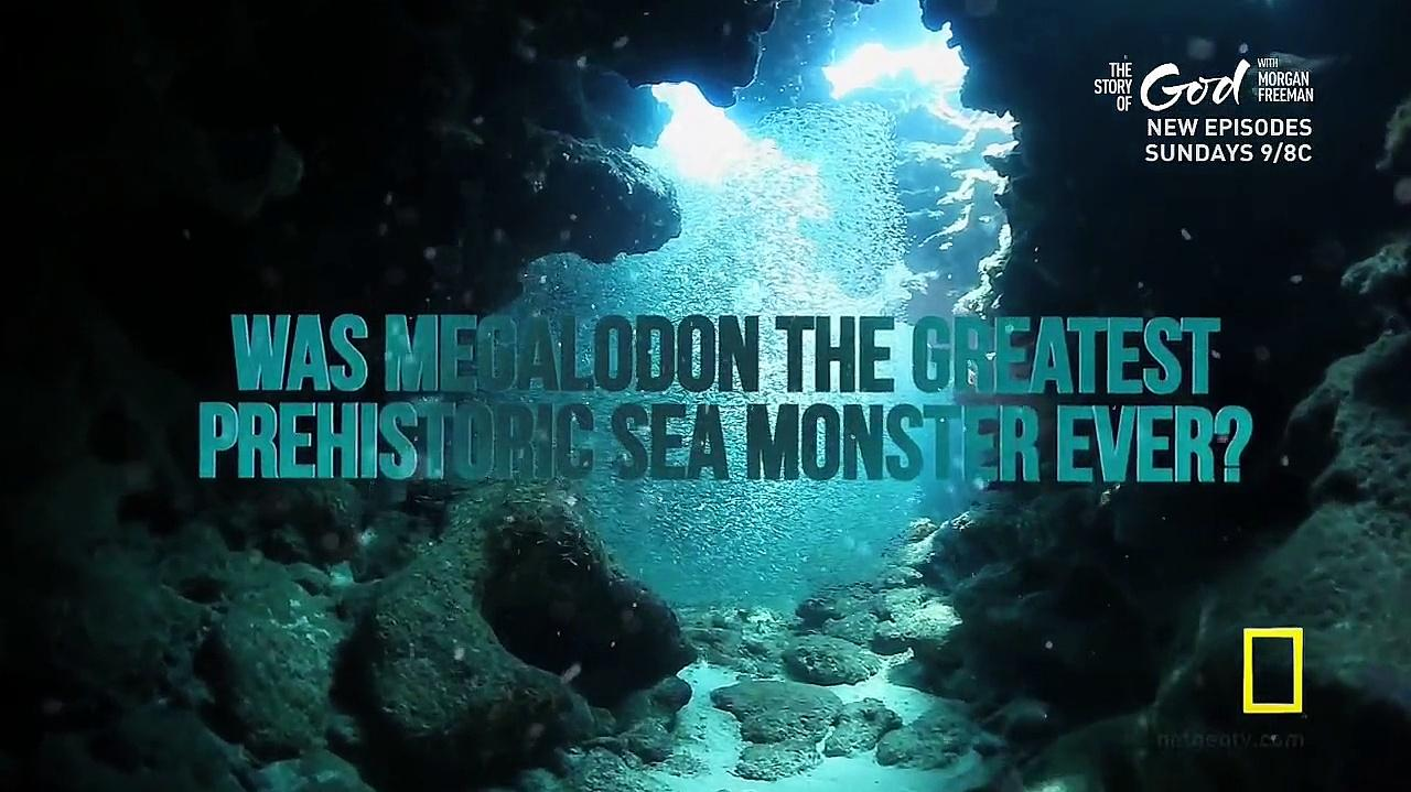 Sea.Monsters-The.Definitive