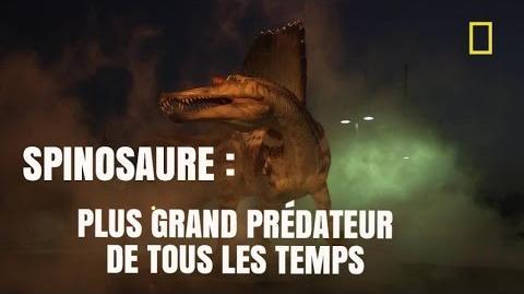Spinosaure_-_le_plus_grand_prédateur_de_tous_les_temps_-National_Geographic-