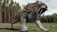 Smilodon roar