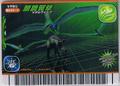 Metal Wing Card 8