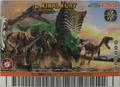 Final Fury Card 10