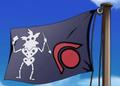 Dr. Z Pirate Flag