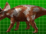 Diceratops