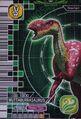 Muttaburrasaurus Card 3