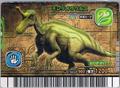 Tsintaosaurus Card 4