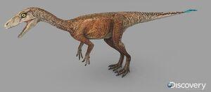 Eoraptor female.jpg
