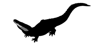 Kinesuchus