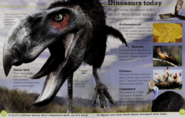 Dinosaurs Today