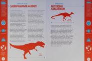 Saurophaganax and Fruitadens