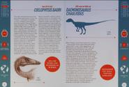 Coelophysis and Daemonosaurus