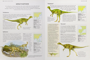 Jurassic Ornithopods