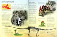 Jurassic graveyard