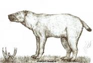 Dinocyon thenardi by teratophoneus d6pg4fu