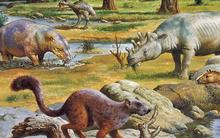 Paleogene.png