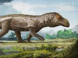 Mandasuchus