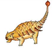 Bissektipelta archibaldi illustration.png