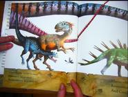 Dinosaur feathers 10