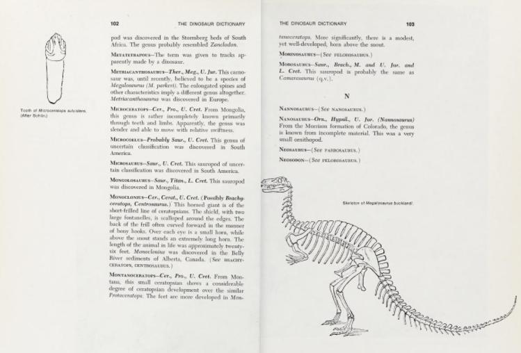 Neosodon