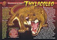 Thylacoleo front