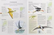 Triassic pterosaurs