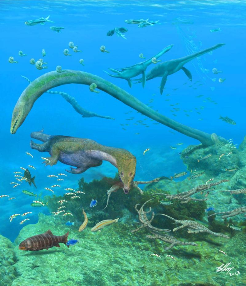 Fuyuansaurus