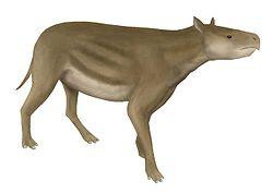 Heptodon
