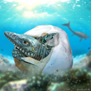 Art impression of a baby mosasaur hatching