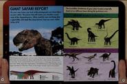 Giant Safari Report