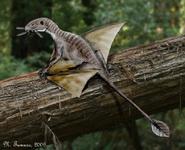 Life restoration of Peteinosaurus zambelli