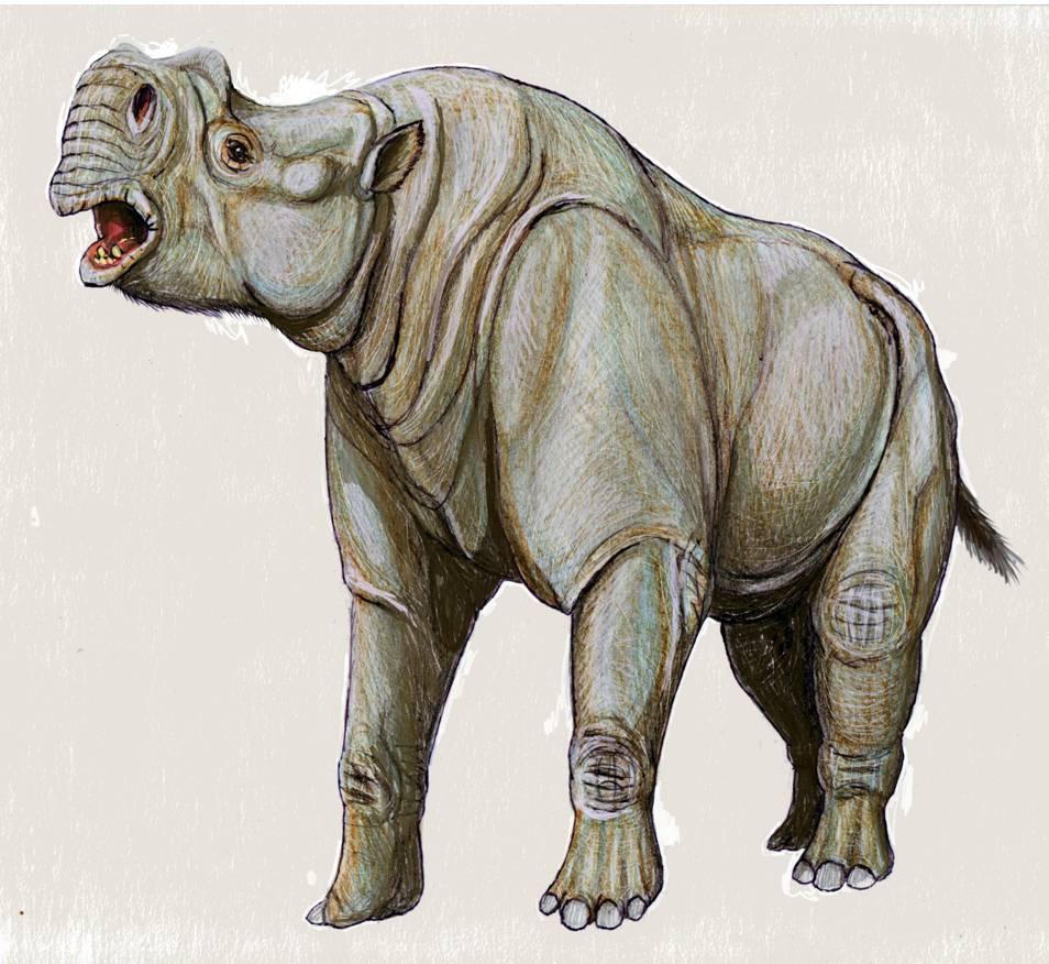 Protitanotherium