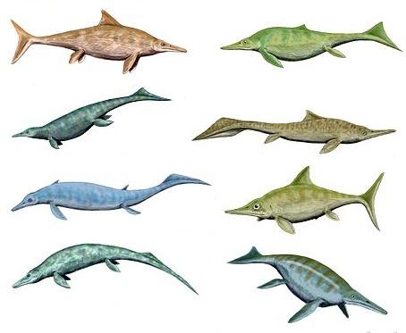 Ichthyosauria
