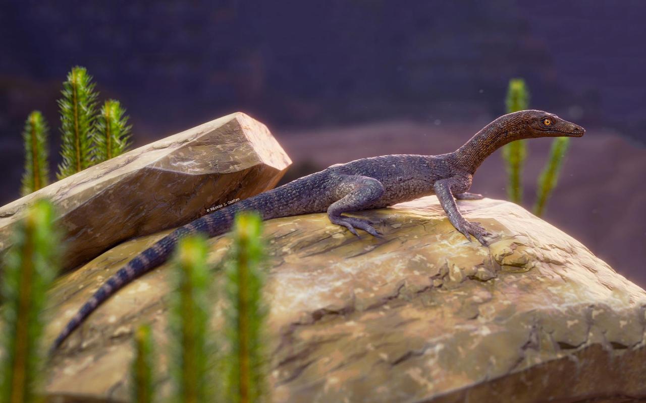 Elessaurus