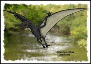 Anurognathus by zakafreakarama 356d
