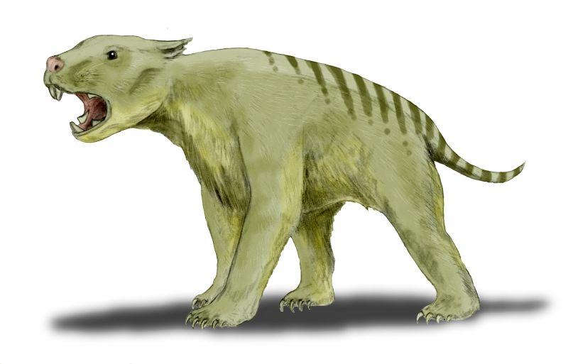 Extinct Australian megafauna