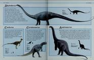 Diplodocus, Coelurus, Ceratosaurus and Apatosaurus
