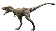 Illustration of a 4 year old Tyrannosaurus rex